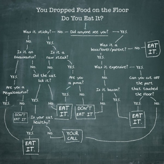 so-you-dropped-your-food-on-the-floor-do-you-eat--31945-1286204712-8
