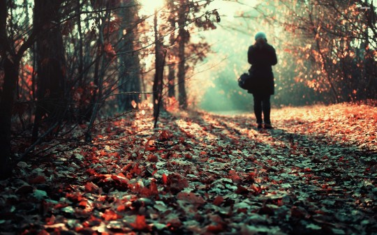 15795-girl-in-the-fall-woods-2560x1600-photography-wallpaper
